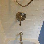 New shower diverter and spigot installed.