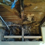 This serious rot was discovered along the back wall of the kitchen. It was repaired.